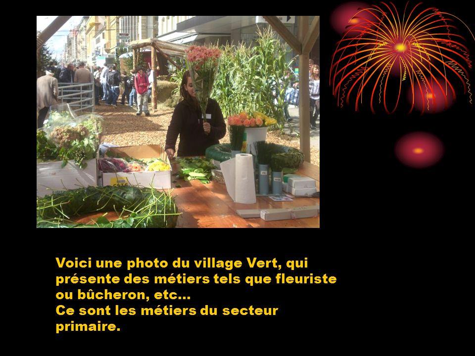 Voici une photo du village Vert, qui présente des métiers tels que fleuriste ou bûcheron, etc...
