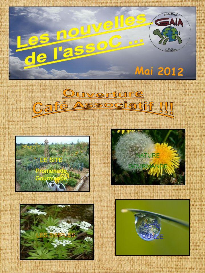 Les nouvelles de l assoC ... Ouverture Café Associatif !!! Mai 2012