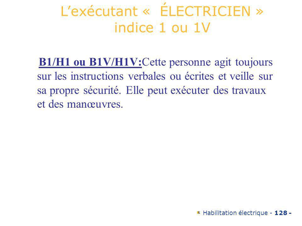L'exécutant « ÉLECTRICIEN » indice 1 ou 1V