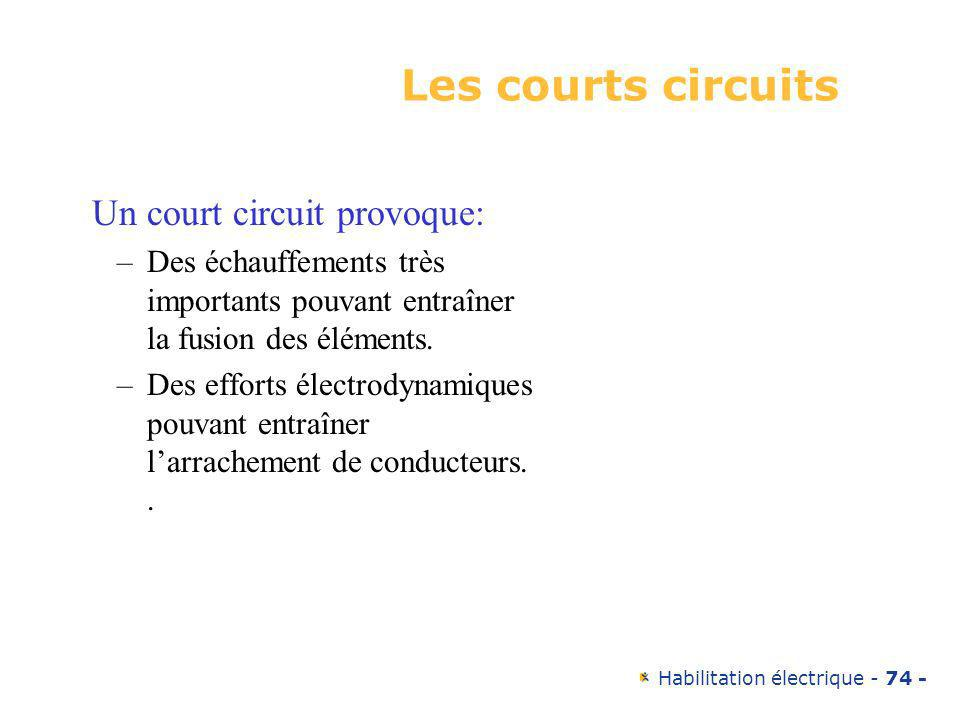 Les courts circuits Un court circuit provoque: