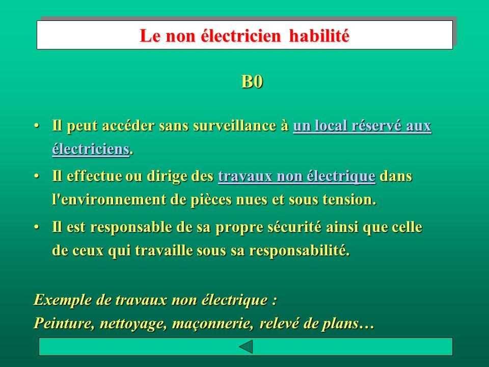 Le non électricien habilité