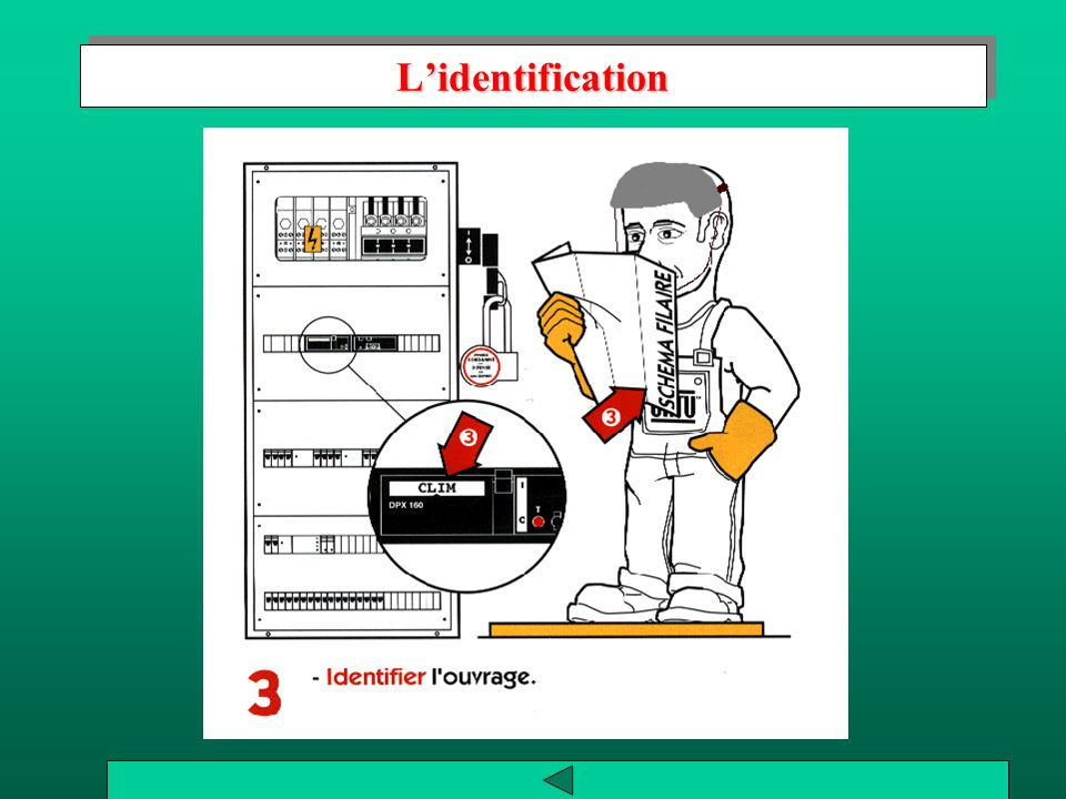 L'identification