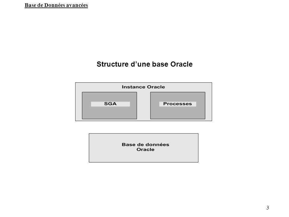 Structure d'une base Oracle