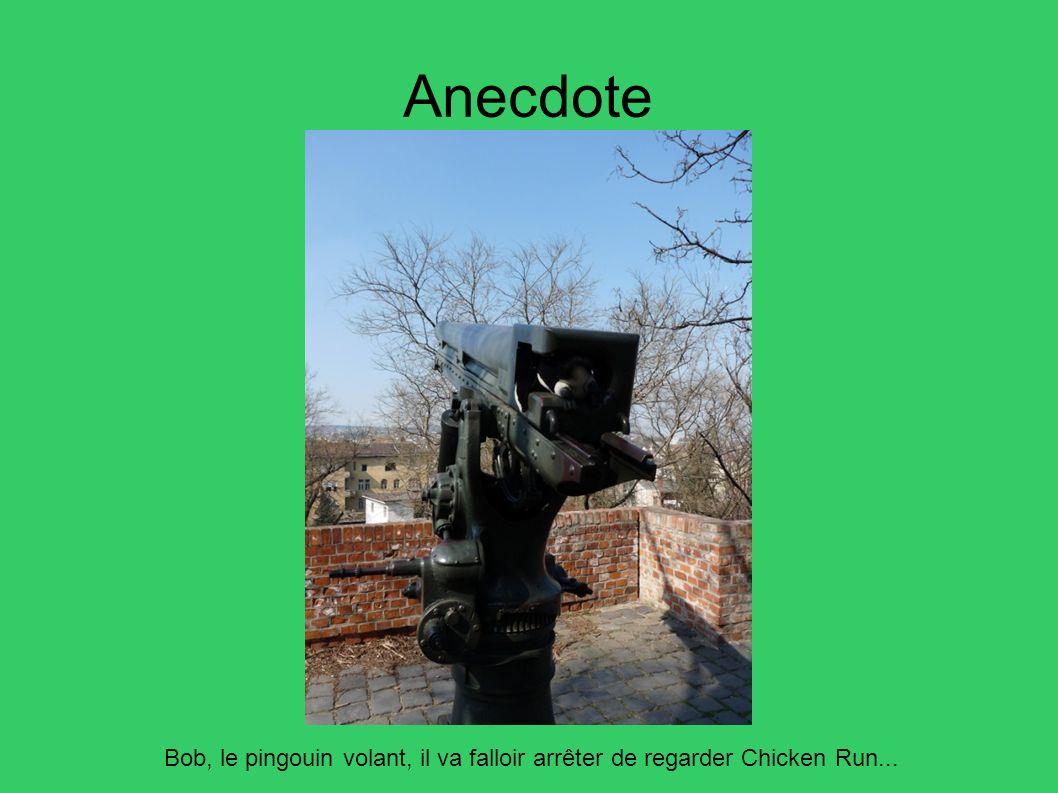 Anecdote Bob, le pingouin volant, il va falloir arrêter de regarder Chicken Run... 18