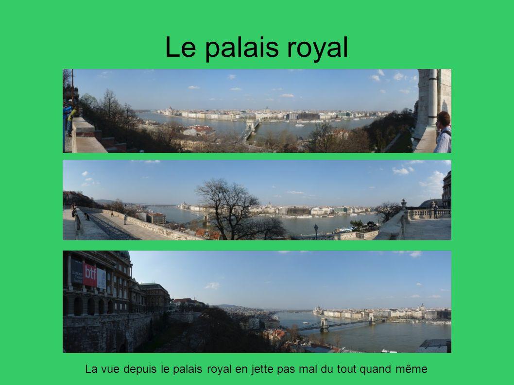 Le palais royal La vue depuis le palais royal en jette pas mal du tout quand même 29