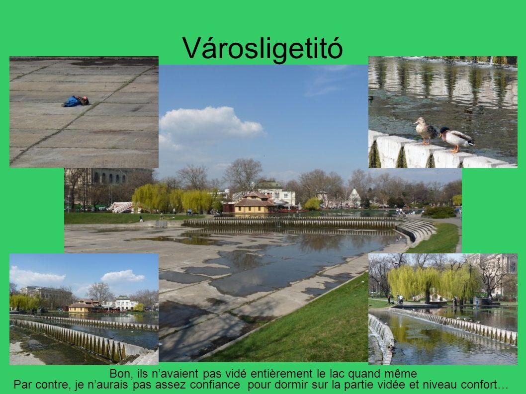 Városligetitó Bon, ils n'avaient pas vidé entièrement le lac quand même.