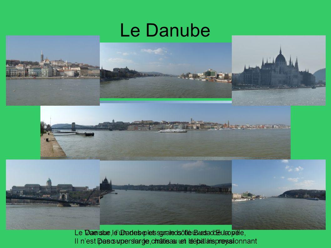 Le Danube Le Danube, l'un des plus grands fleuves d'Europe