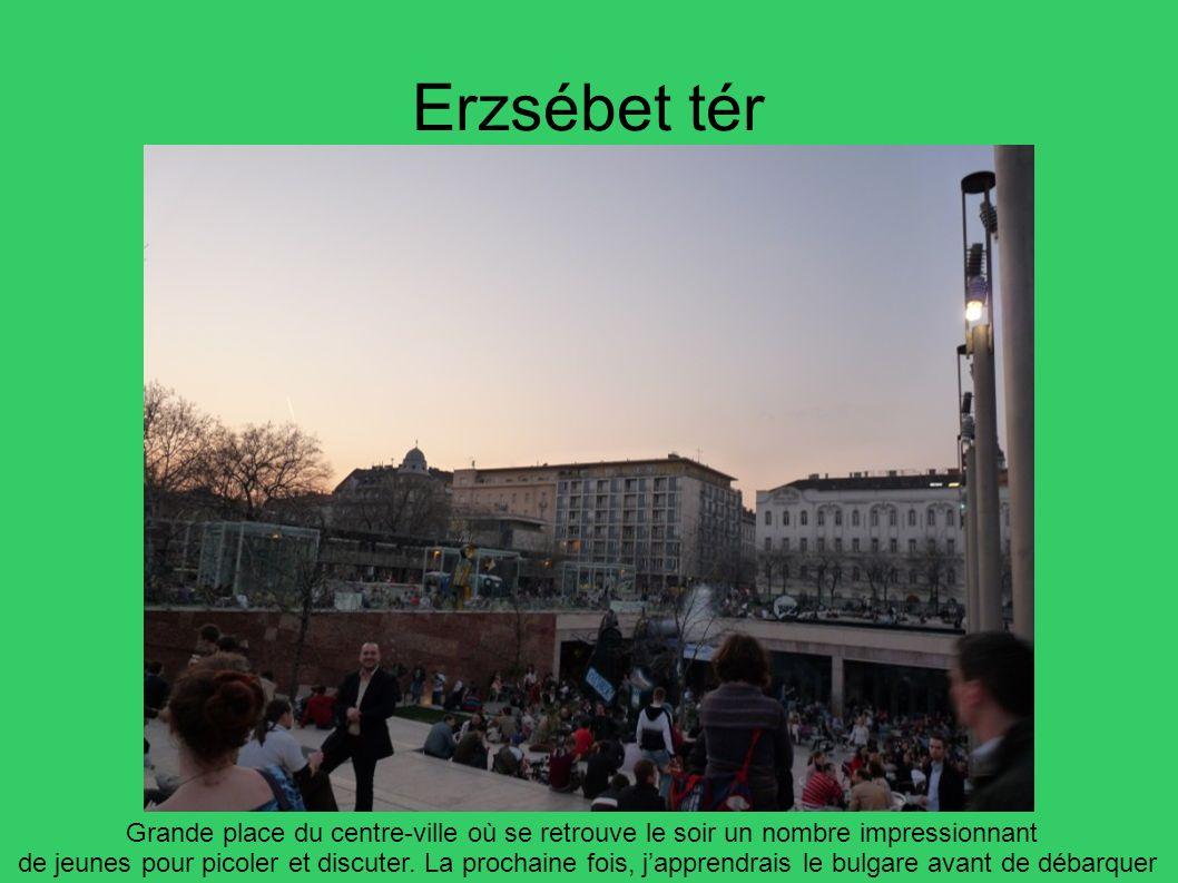 Erzsébet tér Grande place du centre-ville où se retrouve le soir un nombre impressionnant.