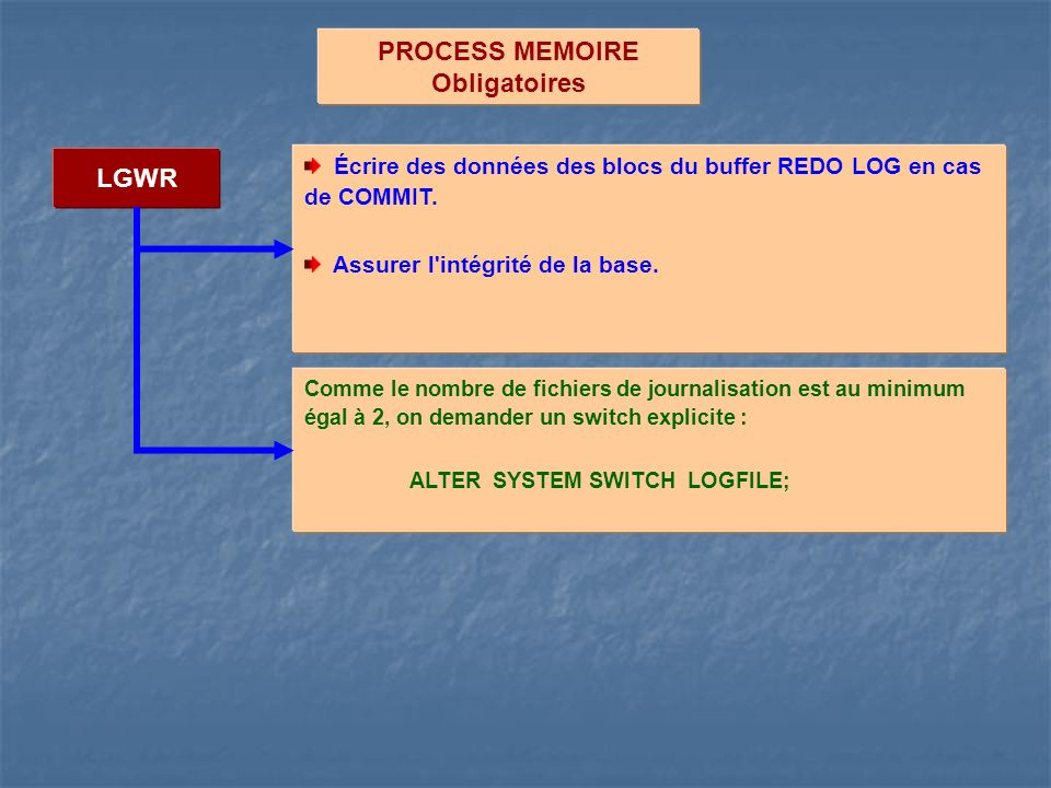 PROCESS MEMOIRE Obligatoires LGWR