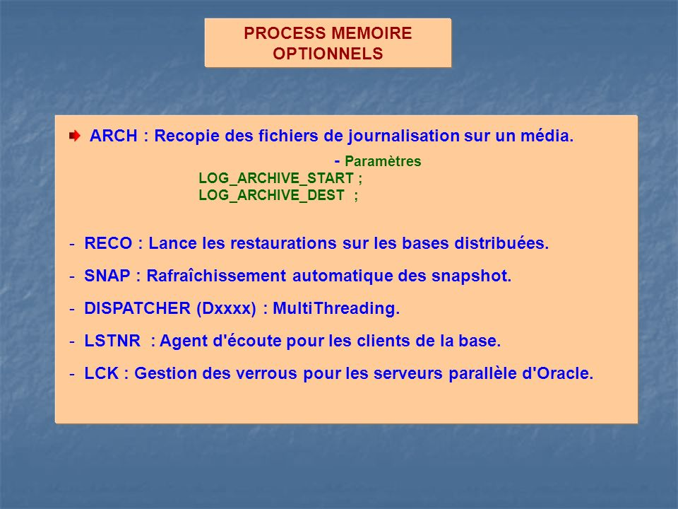 PROCESS MEMOIRE OPTIONNELS