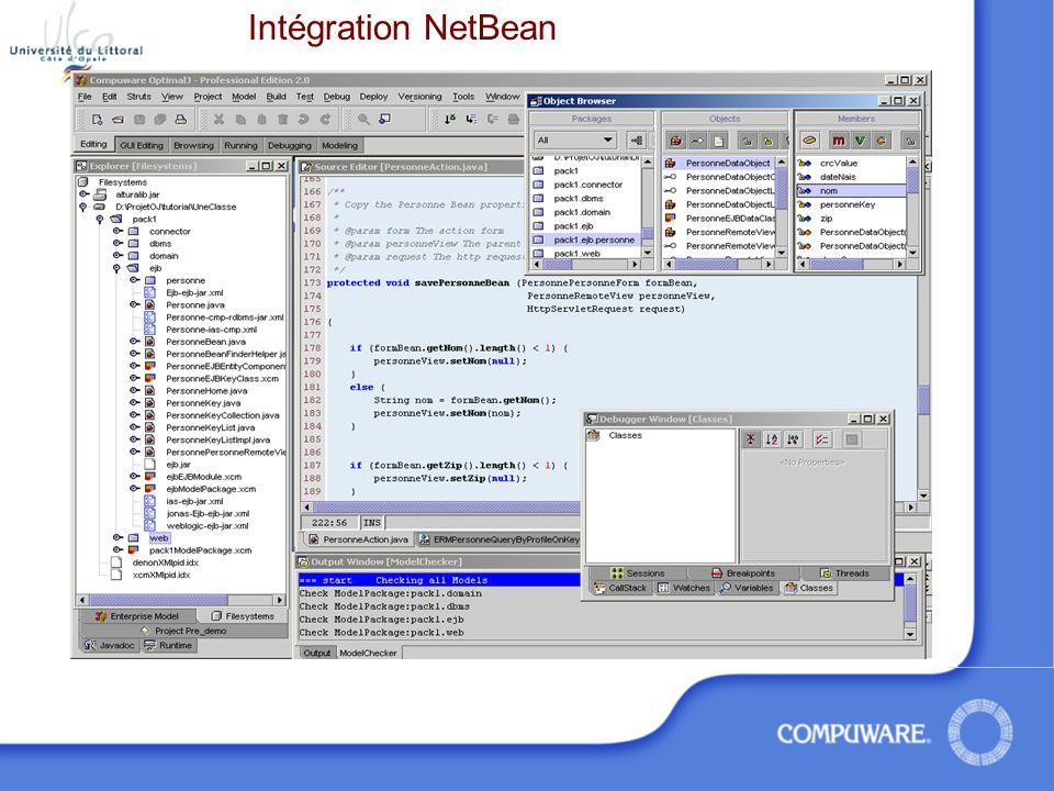 Intégration NetBean
