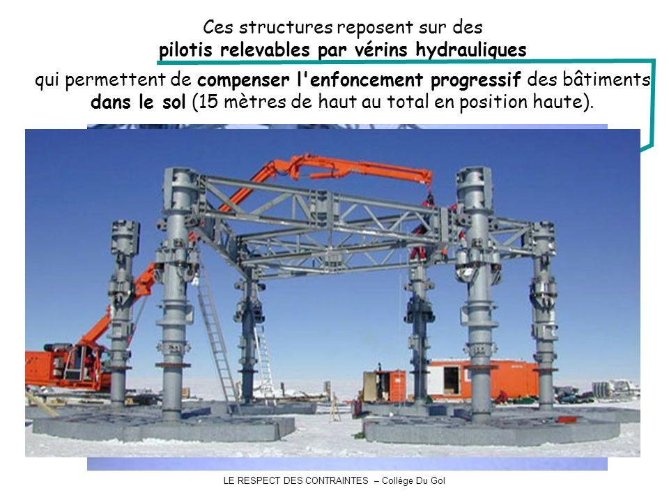 Ces structures reposent sur des