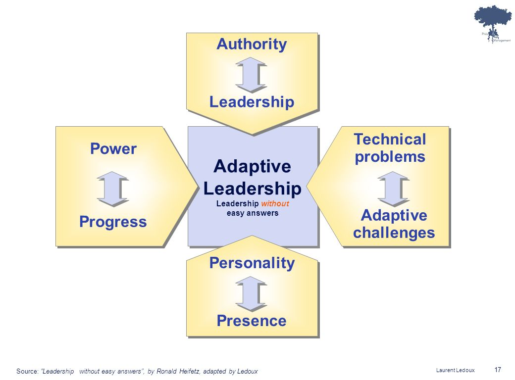 Adaptive Leadership Authority Leadership Technical problems Power