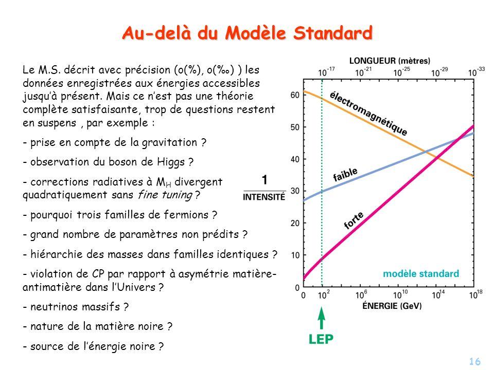 Au-delà du Modèle Standard