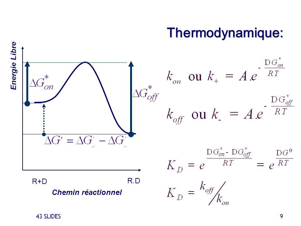Thermodynamique: Energie Libre R+D R.D Chemin réactionnel 43 SLIDES