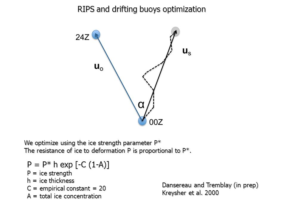 RIPS and drifting buoys optimization