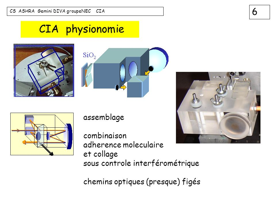 CIA physionomie assemblage combinaison adherence moleculaire