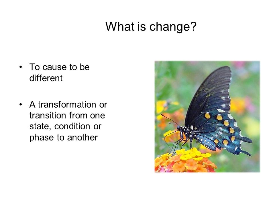 What is change To cause to be different