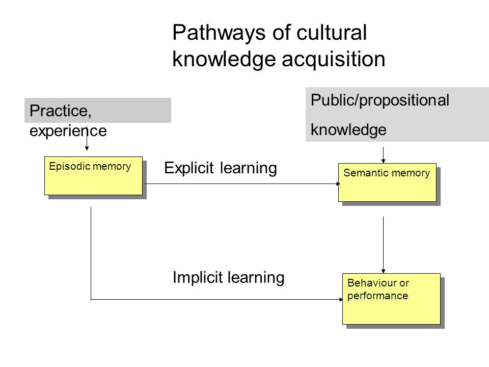 Pathways of cultural knowledge acquisition