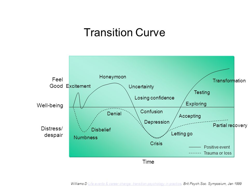 Transition Curve Feel Good Well-being Distress/ despair Time Honeymoon