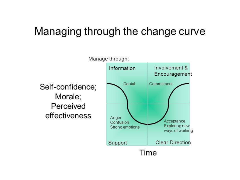 Managing through the change curve