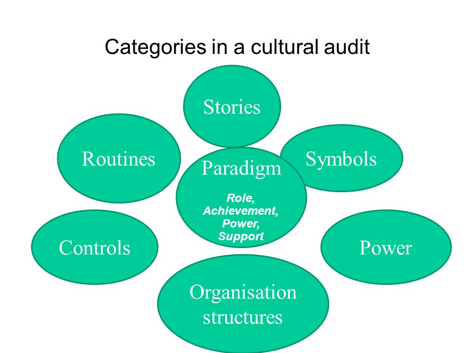 Categories in a cultural audit