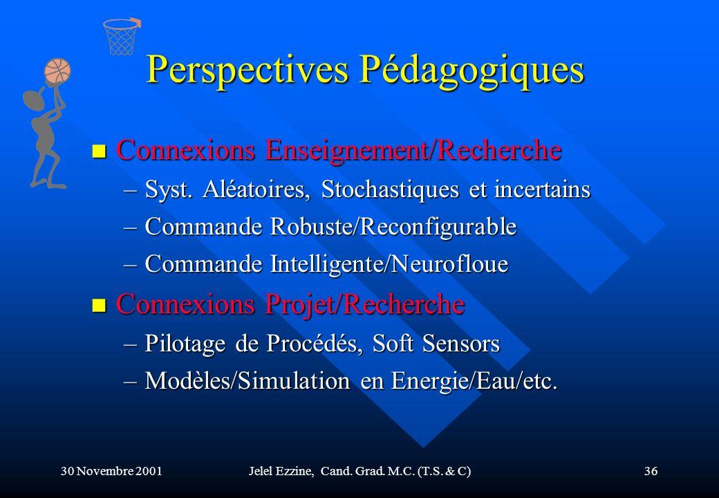 Perspectives Pédagogiques