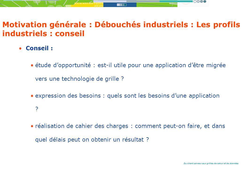 Motivation générale : Débouchés industriels : Les profils industriels : conseil