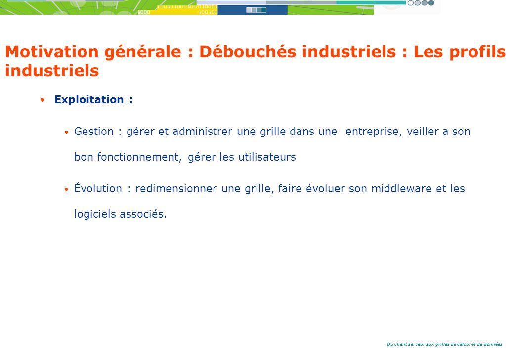 Motivation générale : Débouchés industriels : Les profils industriels
