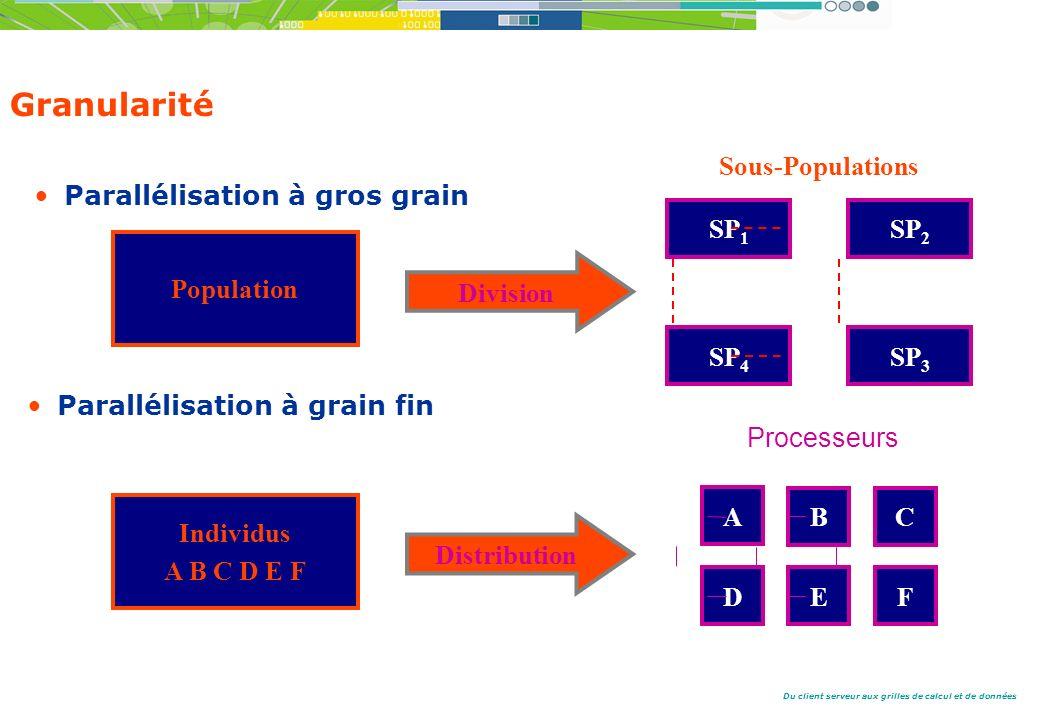 Granularité Sous-Populations Parallélisation à gros grain SP1 SP2