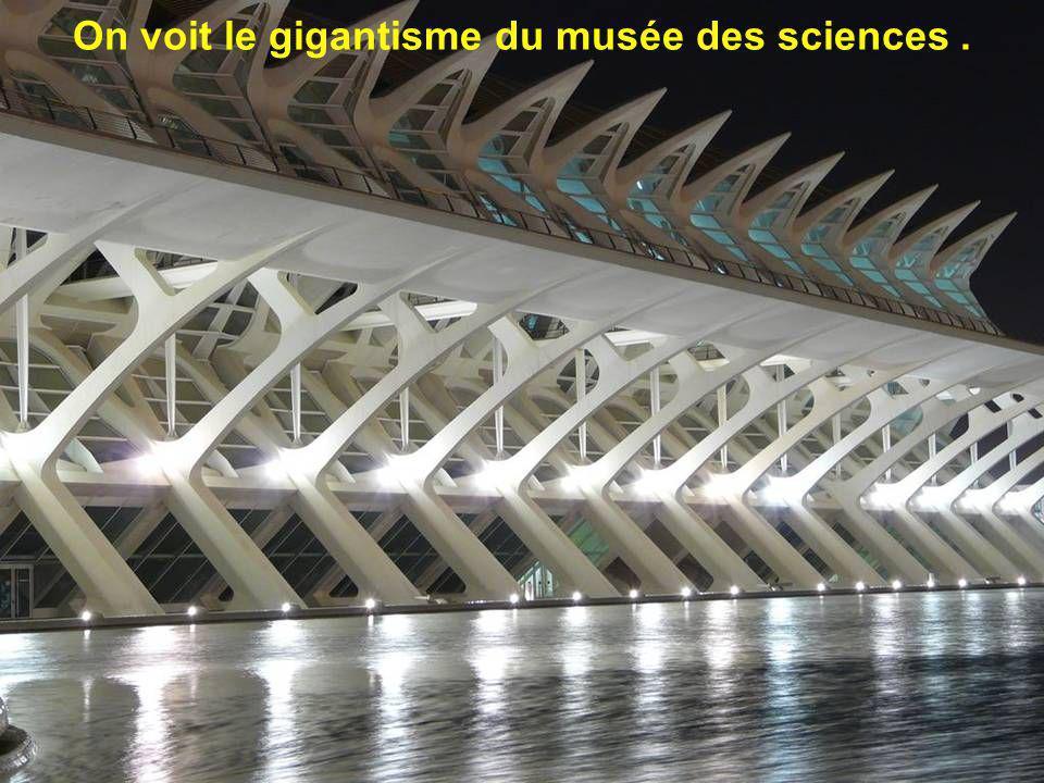 On voit le gigantisme du musée des sciences .