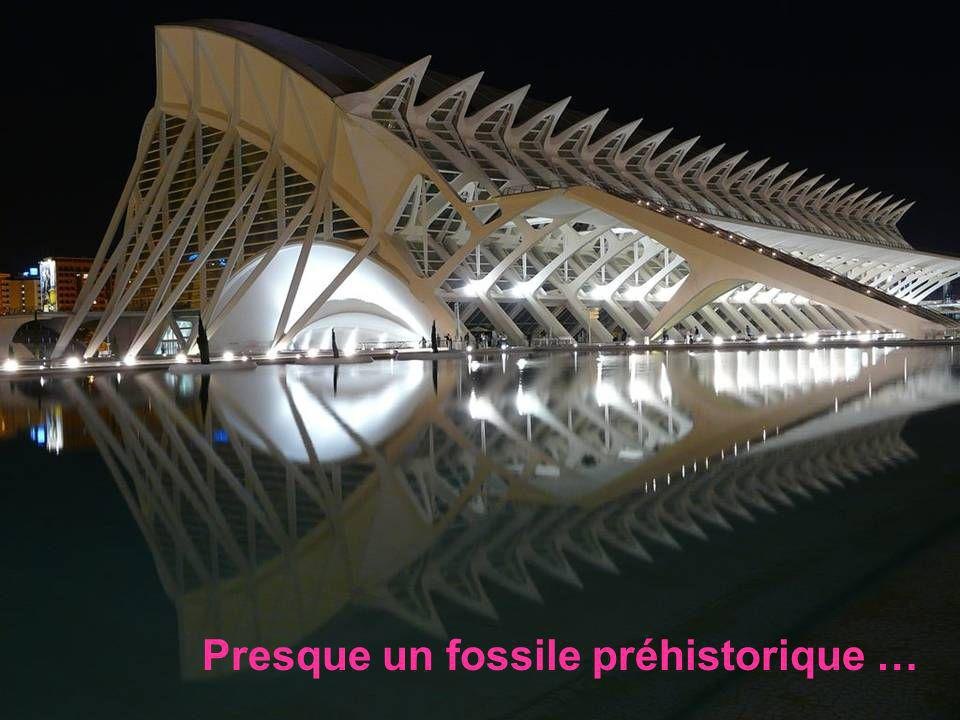 Presque un fossile préhistorique …