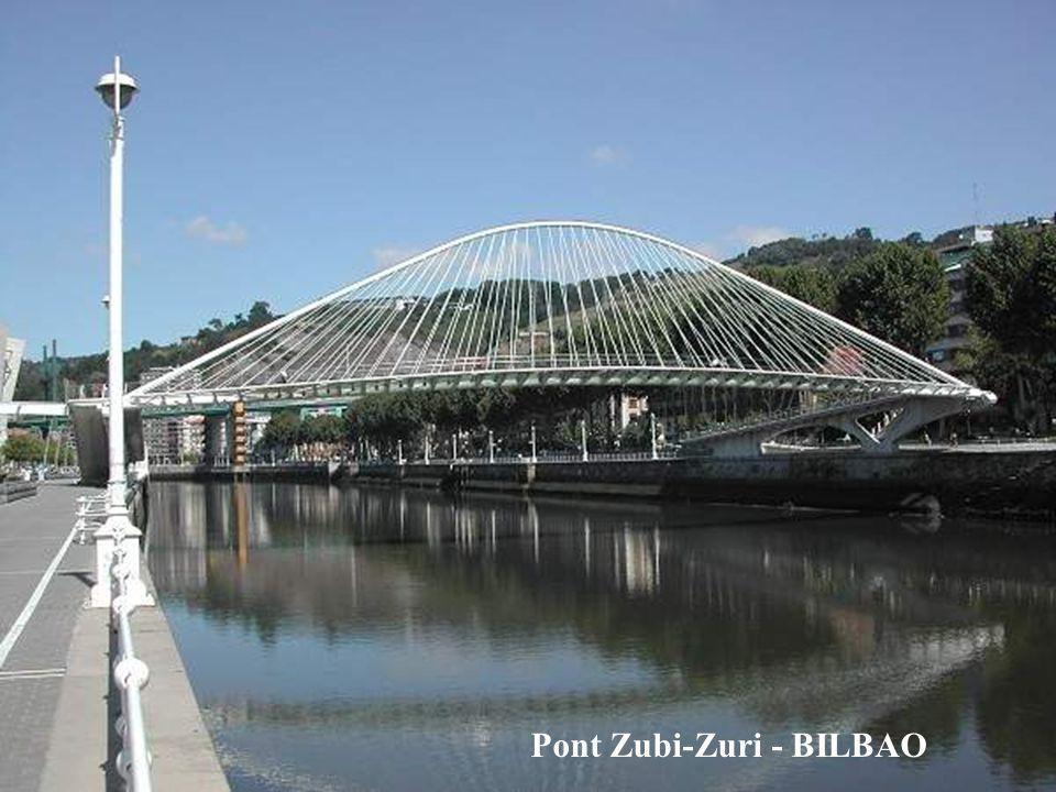 Pont Zubi-Zuri - BILBAO