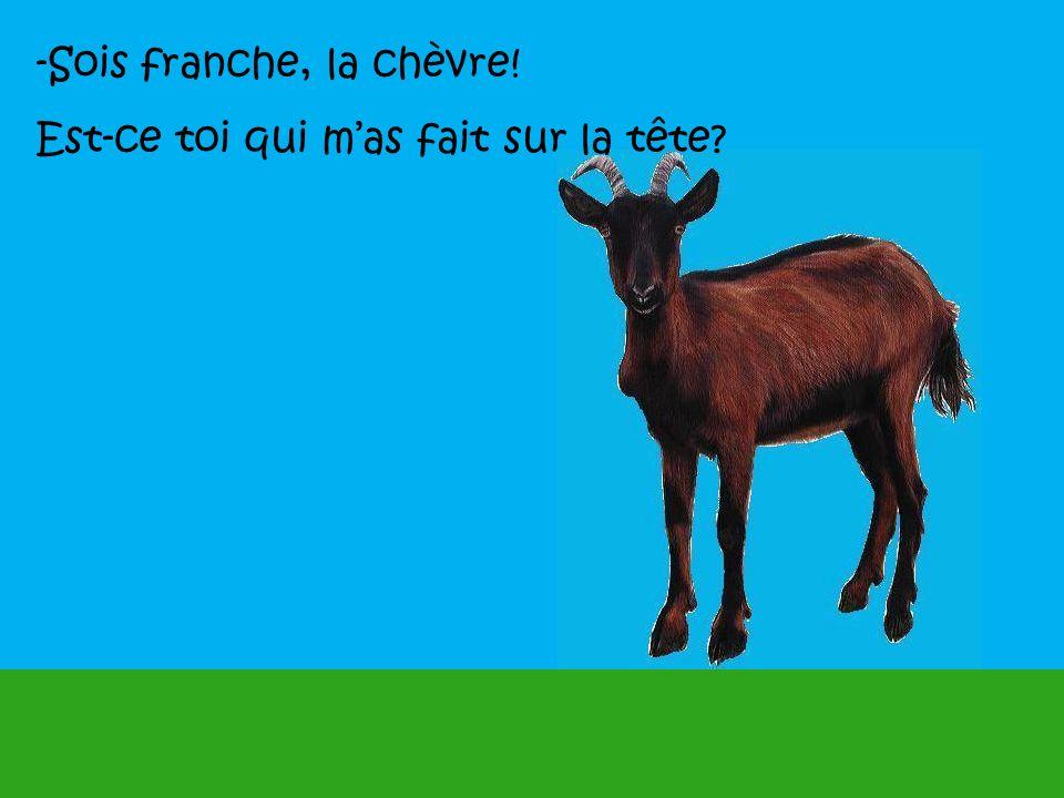 -Sois franche, la chèvre!