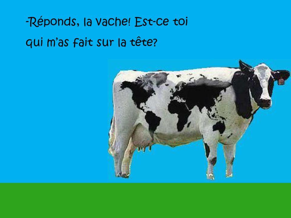 -Réponds, la vache! Est-ce toi