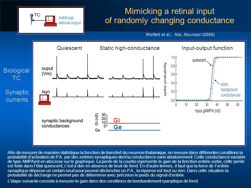 Mimicking a retinal input of randomly changing conductance
