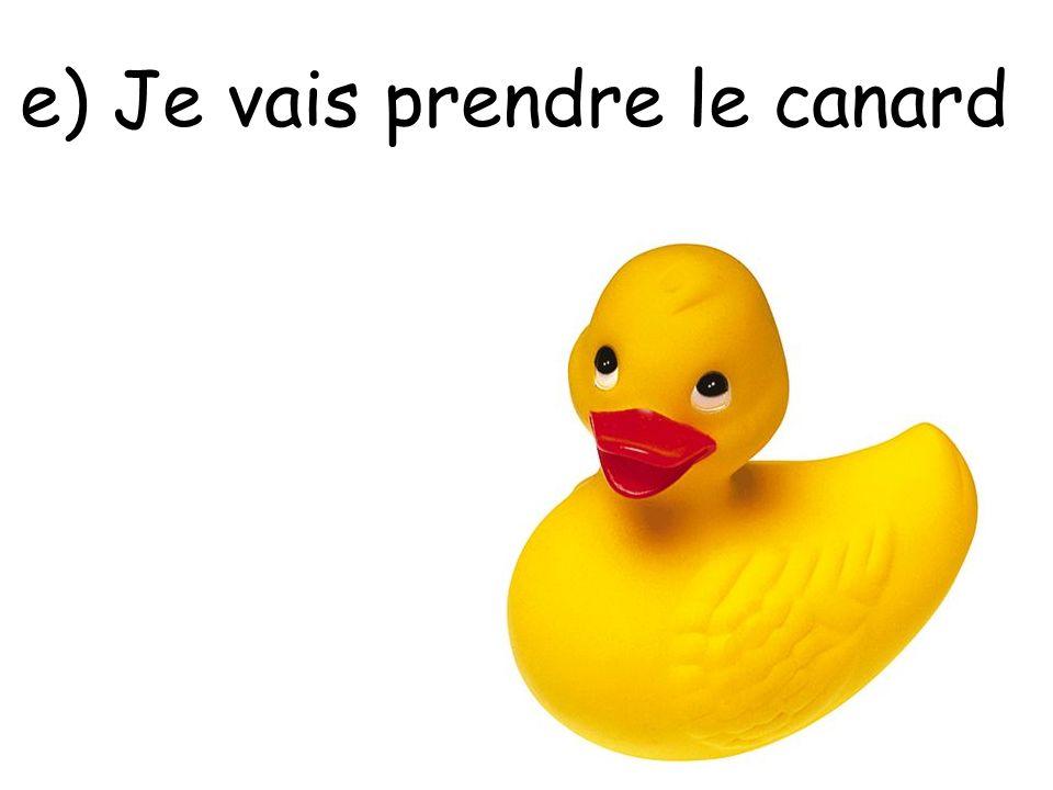 e) Je vais prendre le canard