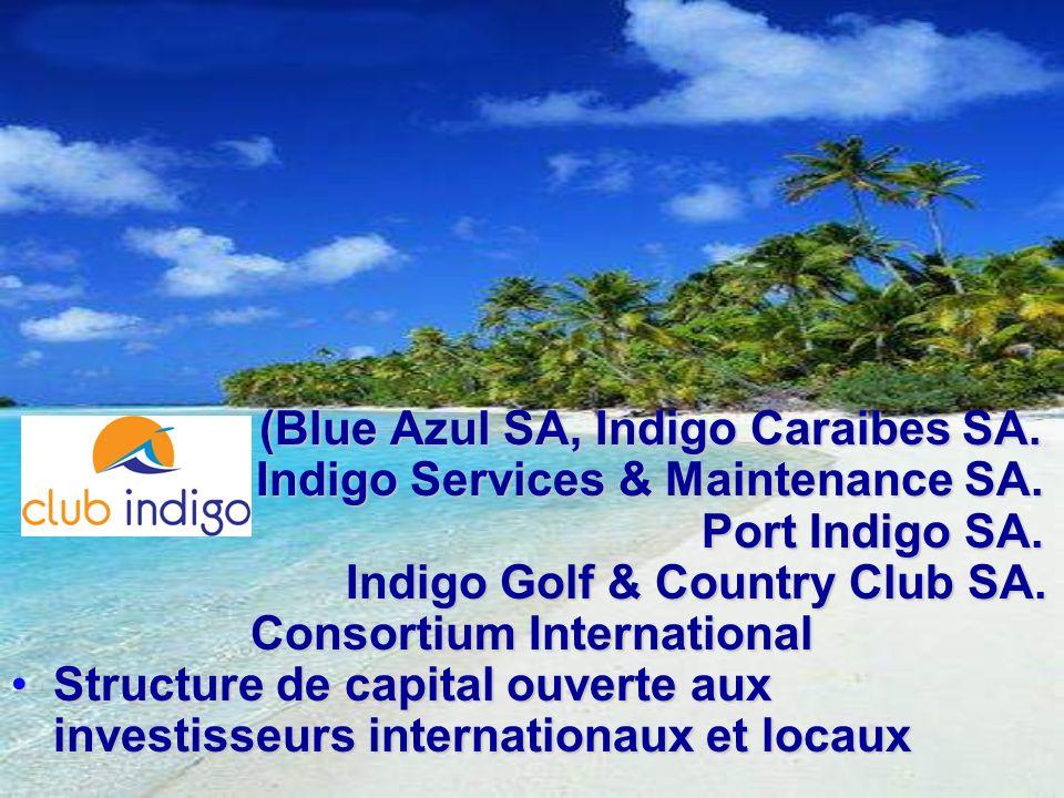 (Blue Azul SA, Indigo Caraibes SA. Indigo Services & Maintenance SA.
