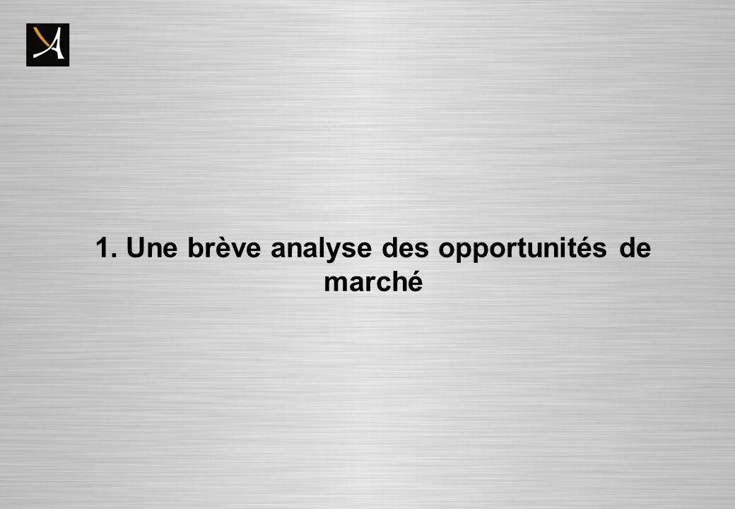 1. Une brève analyse des opportunités de marché