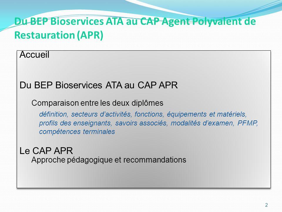 Du BEP Bioservices ATA au CAP Agent Polyvalent de Restauration (APR)