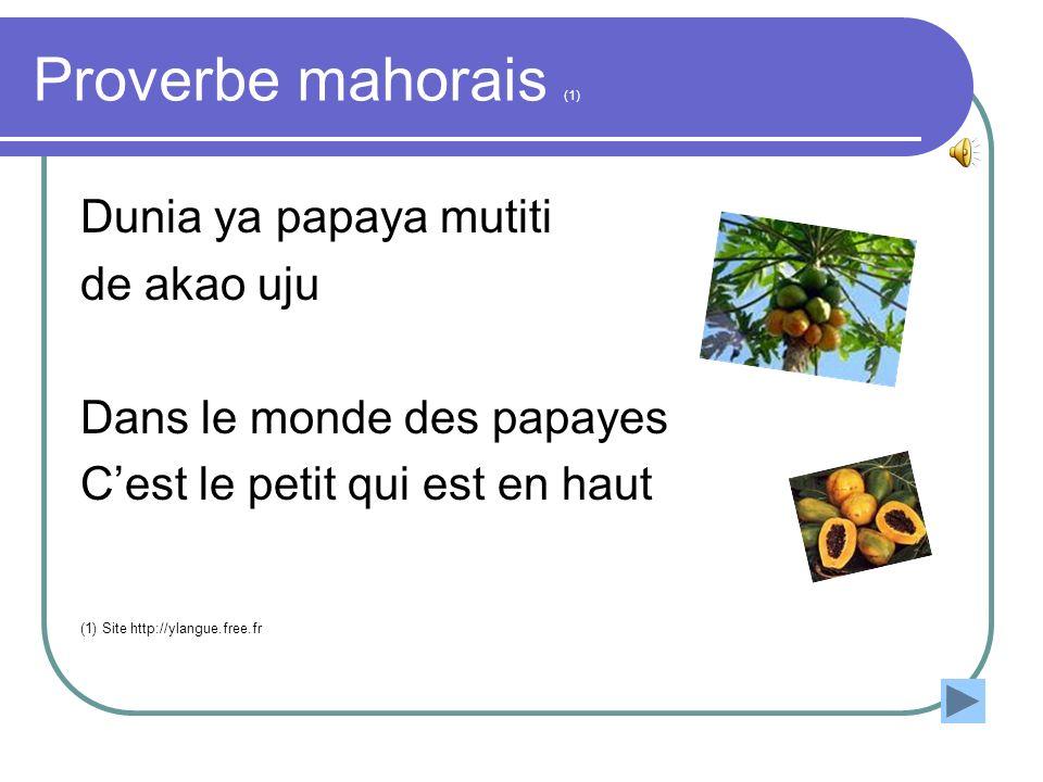 Proverbe mahorais (1) Dunia ya papaya mutiti de akao uju