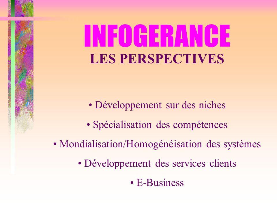 INFOGERANCE LES PERSPECTIVES Développement sur des niches