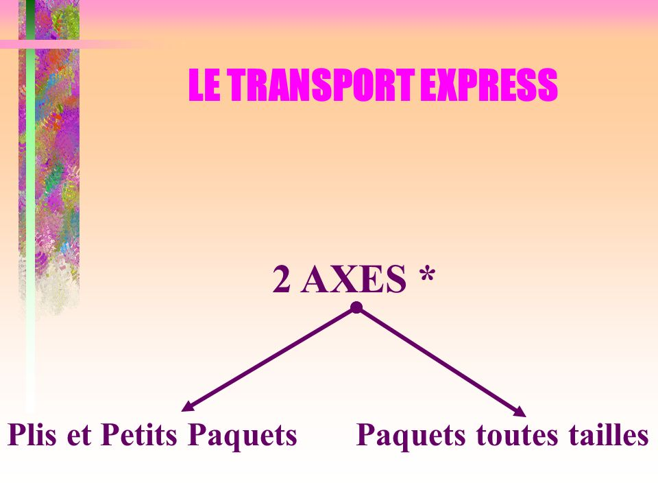 LE TRANSPORT EXPRESS 2 AXES *