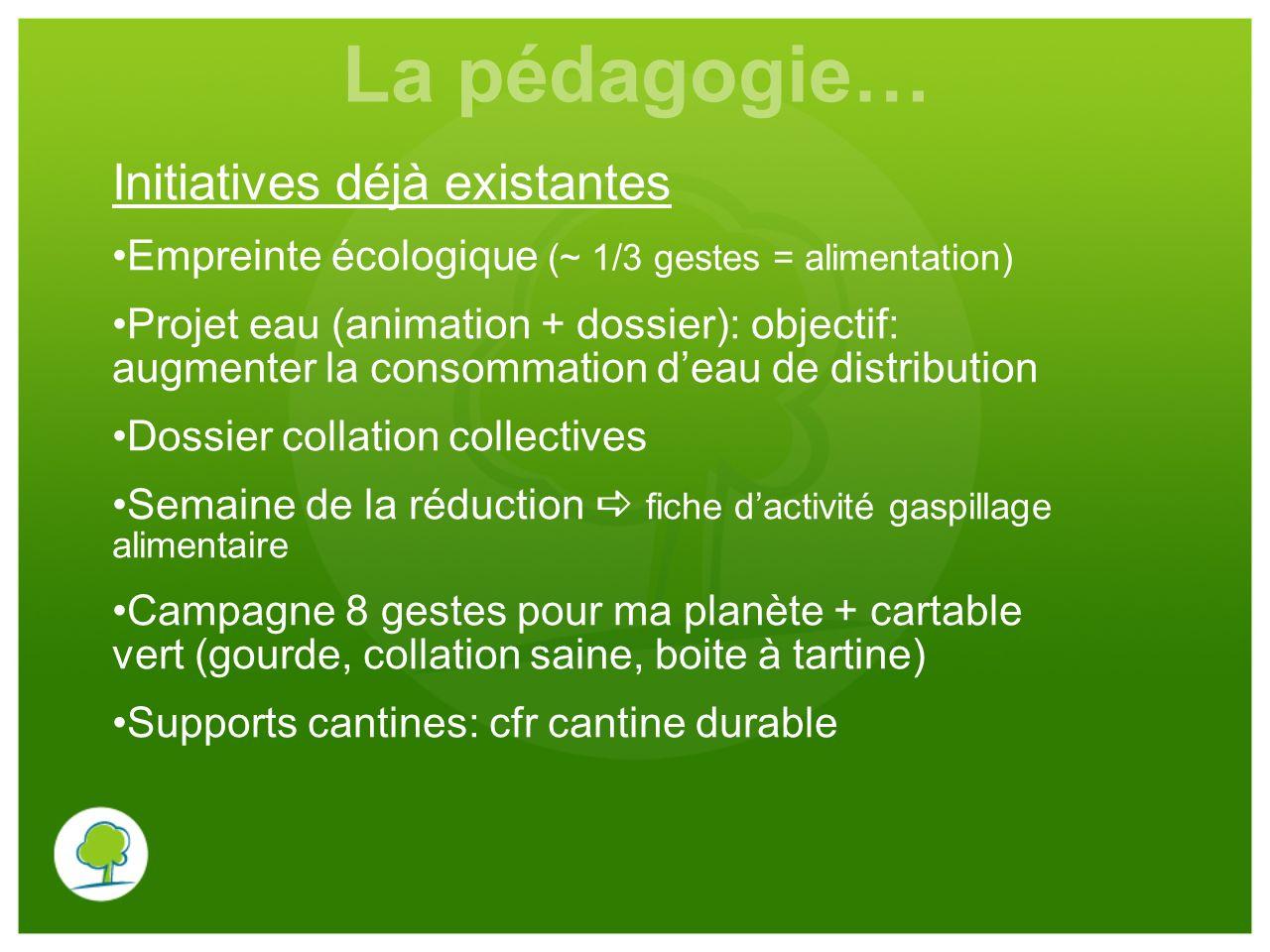 La pédagogie… Initiatives déjà existantes