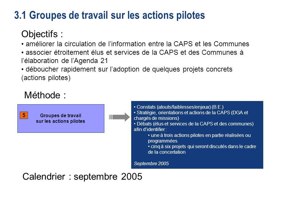 3.1 Groupes de travail sur les actions pilotes