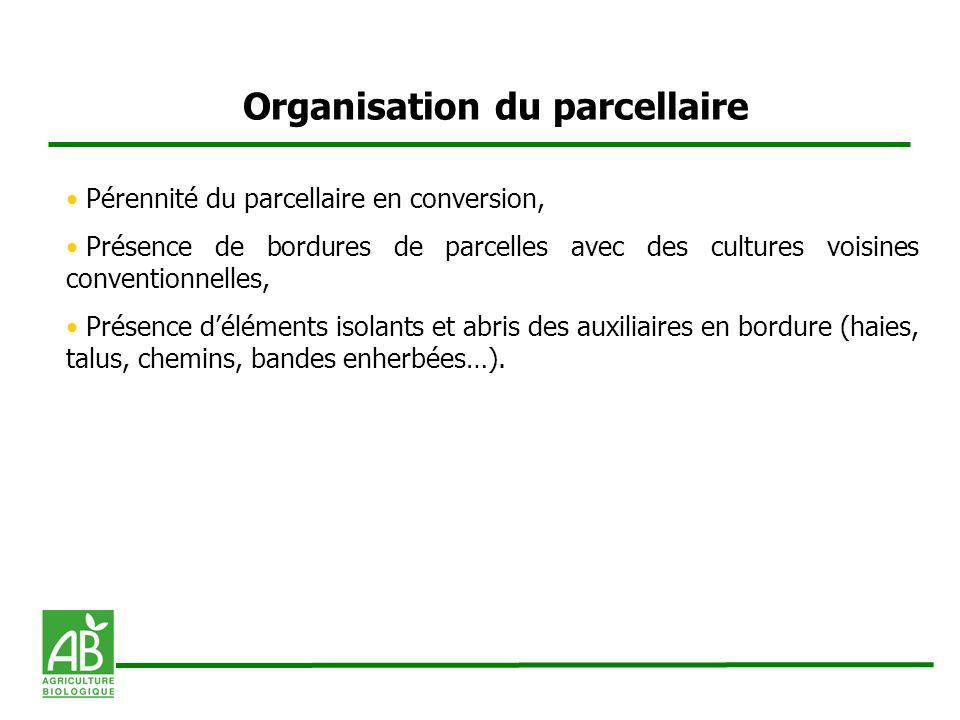 Organisation du parcellaire