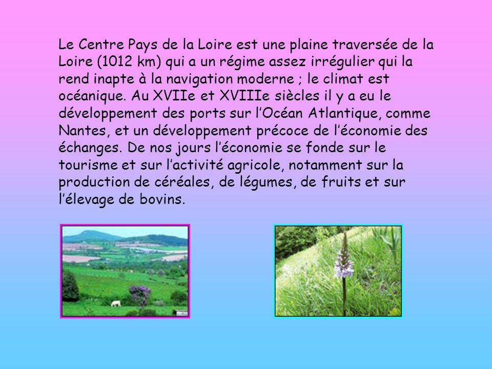 Le Centre Pays de la Loire est une plaine traversée de la Loire (1012 km) qui a un régime assez irrégulier qui la rend inapte à la navigation moderne ; le climat est océanique.