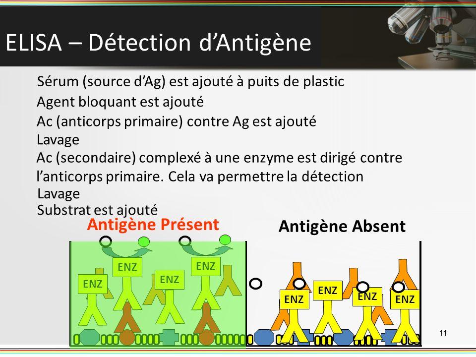 ELISA – Détection d'Antigène