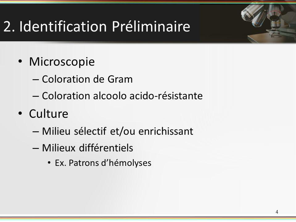 2. Identification Préliminaire