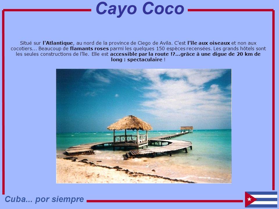 Cayo Coco Cuba... por siempre